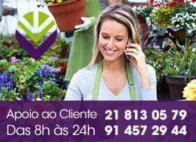 apoio_loja_flores_lisboa