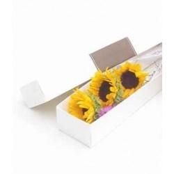 Entrega de Flores ao Domicílio - Surpreenda com um ramo de flores low cost
