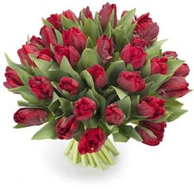 Bouquet de 20 Tulipa Vermelha