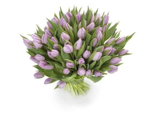 Bouquet de Tulipa Roxa
