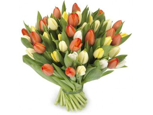 Bouquet de 20 Tulipa Multicor