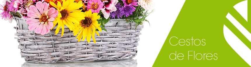 Cestos de Flores: rosas , Aniversário