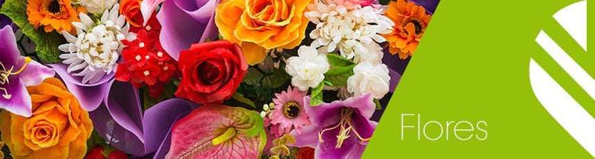 Flores com entrega ao domicílio em Lisboa e Portugal