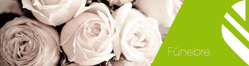 Flores Funeral: Coroas, Ramos, Cruzes