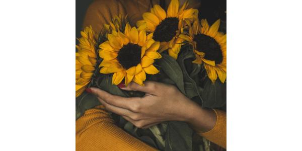 As melhores flores para o verão: saiba quais escolher!